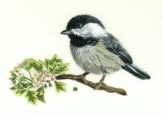 Needle Painting Embroidery Kit - Chickadee, a Hand Embroidery Design as an Alternative to Cross-stitch.