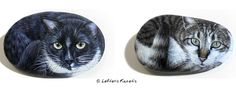 Aladdin and Fin Cats Portraits Painting on Rocks By Lefteris Kanetis!