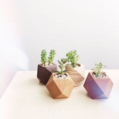 Weekend is near... #interior #zakka #VSCOcam #etsy #succulents #forhome #hokuou…
