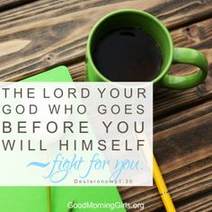 The Lord your God who goes before you will Himself fight for you. Deuteronomy 1:30