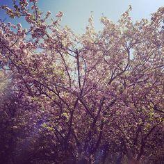 beautiful day in new paltz, ny  :)