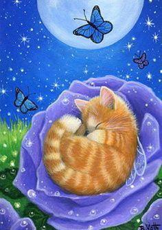 ~ Good Night ~