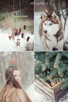 Princesa da floresta