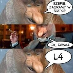 Funny Memes, Lol, Animals, Historia, Humor, Animales, Animaux, Animal, Animais