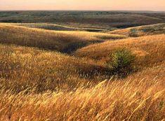 Photograph entitled November in the Kansas Flint Hills : Flint Hills photography, beautiful landscapes, Flint Hills Photography :: James Nedresky photographer