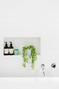 Recesses and niches in the wall aren't just for shampoo and conditioner. Combine products with a trailing plant to add softness, colour and texture to your bathroom.