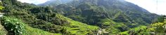 Pana Banaue Rice Terraces - Paddy field - Wikipedia, the free encyclopedia