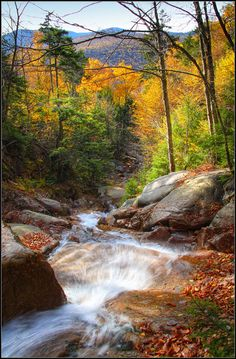 Falling Waters Trail @Franconia Notch State Park, New Hampshire