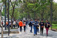 Un paseo en la Alameda central. Central grove walk.