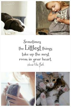The littlest things. Collage by Jeetje♡ Beautiful Collage, Life Is Beautiful, Quote Collage, Mood Colors, Matou, Sweet Words, Mood Boards, Inspirational Quotes, Thoughts