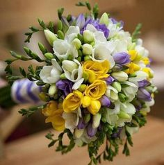 daffodils tulips and crocuses bouquet - Google Search