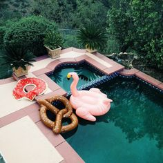 birdyally:  bialoveee:  I've never hated a pool floaty more than I hate the pretzel one.  why   instagram: @iam_evelina