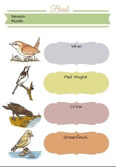 bird journal template