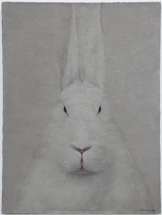 White Hare - Shao Fan
