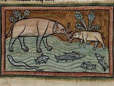 Charlemagne's Elephant