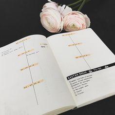 bullet journal idea | bujo weekly spread