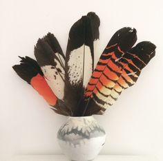 Black cockatoo feathers in Native American Indian pot. At home... #blackcockatoo #feathers #nativeamericanindian #native #american #indian #black #cockatoo #cat #lee