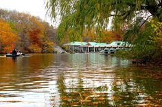 Um encanto no Central Park: The Loeb Boathouse Central Park, Upper West Side, New York Giants Logo, Lakefront Property, Boat Lift, New York Photographers, Nyc, New York City Travel, New York Photos