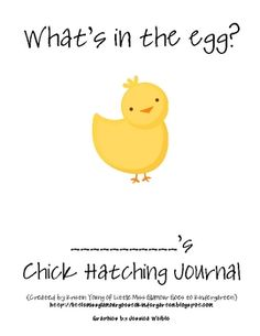 Use this 17 page observation journal while learning about living and nonliving things, oviparous and viviparous animals or when hatching chicks in ...