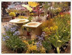 The Garden Company, 2218 Mission Street, Santa Cruz. 831-429-8424