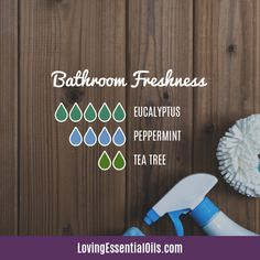 Top 10 Essential Oils for the Bathroom with Recipes! # Top 10 Essential Oils for the Bathroom with Recipes! Bathroom Freshness Diffuser Blend by Loving Essential Oils Eucalyptus Essential Oil, Eucalyptus Oil, Tea Tree Essential Oil, Essential Oil Diffuser Blends, Doterra Diffuser, Diffuser Recipes, Aromatherapy Oils, Aromatherapy Recipes, Peppermint Tea