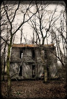 """An abandoned house within the vicinity of the Bell Witch Caves in Adams, Tennessee, USA. The photographer clearly states it is not the actual """"Bell Witch House"""" of folklore. photo © Scout 11 Been there.really sad Old Abandoned Houses, Abandoned Mansions, Abandoned Buildings, Abandoned Places, Old Houses, Abandoned Property, Spooky Places, Haunted Places, Bell Witch"""
