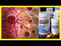LA VITAMINA B17 ESTA PROHIBIDA PORQUE CURA EL CANCER Y TUMOR EN ESTOS ALIMENTOS SE ENCUENTRA LA B17 - YouTube