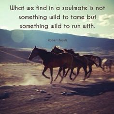 Run wild. #quotes Made with Quotiful for iPhone