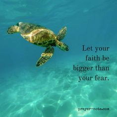 Let your faith be bigger than your fear.  #Prayer