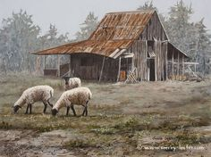Old barn and sheep - Painting Art by Suzie Seerey-Lester - Nature Art & Wildlife Art - Wildlife - Seerey-Lester Art Abandoned Farm Houses, Old Farm Houses, Country Barns, Old Barns, Country Life, Country Living, Landscape Art, Landscape Paintings, Watercolor Barns