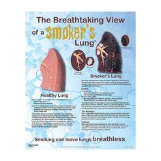 how to build up your lungs
