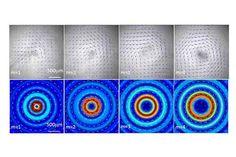 sonic microscope - Google Search