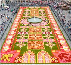 The carpet is colossal! It is made of 800,000 fresh Begonias and spans 985 feet!The flowers are packed together one by one, 300 to every square meter of the ground,  so tightly (no soil is used at all) that they won't be blown away by the first gust of wind.  fullcircleeventi.com