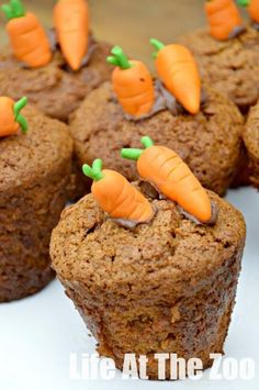 Easy Carrot Cupcake Recipe - how cute are these carrot cupcakes?! Love.