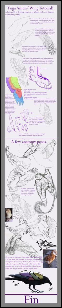 Wing Tutorial by SunStateGalleries.deviantart.com on @deviantART:
