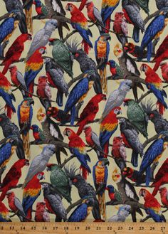 Living Wonders Parrots Macaws Exotic Birds Cotton Fabric Print by Yard D658.09 | eBay