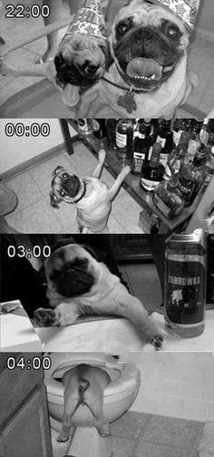 My typical weekend…