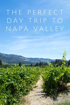 Going to Napa Valley for one day? Use these suggestions to build the perfect day trip to Napa Valley. Suggestions for Napa Valley with kids are included. Oh The Places You'll Go, Places To Travel, Travel Destinations, Travel Stuff, Las Vegas, California Travel, California Wine, Northern California, Sacramento California