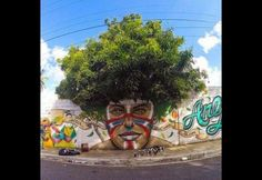 Delightful: City Plants are Transformed Through Street Art | Photos | HGTV Canada