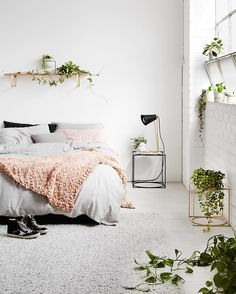 The clever girls behind @ivymuse_melb have just launched their forth collection 'Homebody' and it's available online & in-store now... (Link in bio). It includes that super cute timber shelf, their signature plant stands & my fave is the little hanging planters with a leather strap Styling @huntandbow Image @annetteobrien #fentonandfenton #ivymuse #plantstand