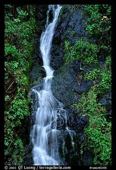 Oregon Waterfall - I want to do a road trip through the Willamette Valley (wine tasting) and Portland (breweries!) - ahh! Dream road trip!
