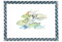 One Kings Lane - Elegant Accents with Character - Framed Fish Print