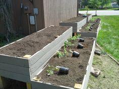 new garden beds!