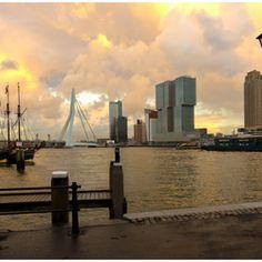 Rotterdam at its best