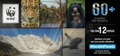 WWF Latinoamérica (@WWF_LAC)   Twitter