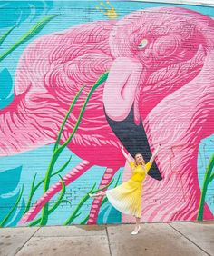 Chicago, Illinois You Ve Got This, Chicago Illinois, Pink Flamingos, Places To See, Moose Art, World, Artwork, Animals, Instagram