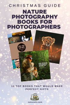 Looking for great christmas inspiration? In this round-up we review 10 top books that would make perfect gifts for any nature photographer!