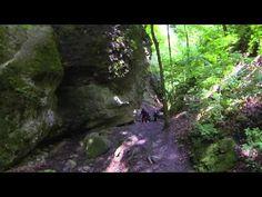 Duna-Ipoly Nemzeti Park - YouTube Heart Of Europe, Homeland, Hungary, Youtube, National Parks, World, Beautiful, Dune, The World