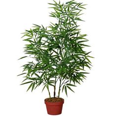 Artificial plant of Bamboo-IG827-804-3