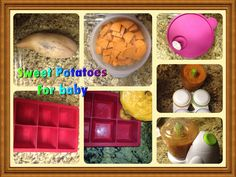 Gather your ingredients. I have read many articles about ho… – Cinnamon Clark – Homemade baby foods Sweet Potatoes For Baby, Toaster Oven Cooking, Cookie Do, Homemade Baby Foods, Cookies Policy, Yams, Baby Food Recipes, Food Processor Recipes, Frozen